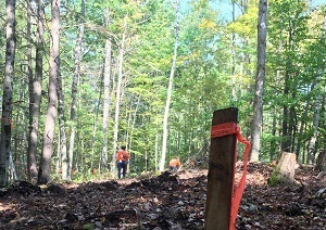 A team got to work recently in Hale, clearing brush and moving forward on the project to complete a segment of the Iosco Exploration Trail