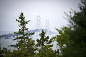 A view of the Mackinac Bridge, taken through the foliage of cedar trees on a hazy day