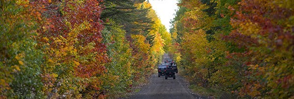 ORV on forest trail with fall color