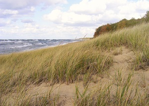 scenic view of the beach at Saugatuck Dunes State Park in Allegan County