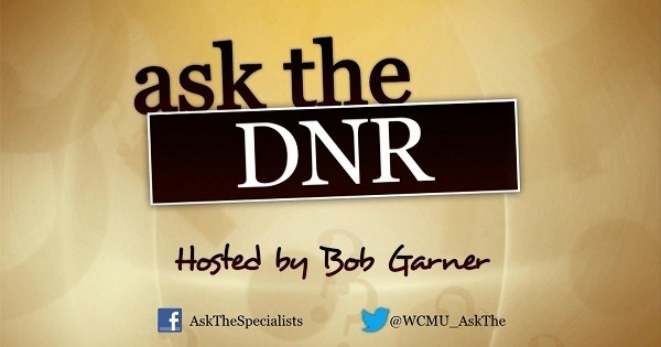 Ask the DNR graphic