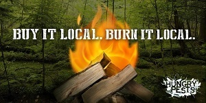 Buy it local, burn it local - firewood awareness reminder