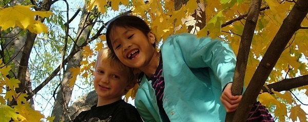 smiling boy and girl up in the branches of a fall maple tree