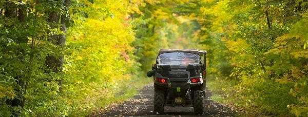 An off-road vehicle viewed from behind, traveling down a road canopied by fall trees.
