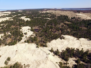 An aerial view of part of the 100-acre land acquisition of sand dunes at Ludington State Park