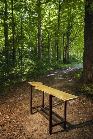 a modern wood-and-metal table sits against a lush green forest background