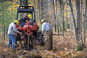 Michigan DNR forest technician Scott Lint runs a vibratory plow treatment around an oak wilt-infected tree in the Manistee National Forest.