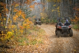 View of two off-road vehicles driving away in an autumn forest