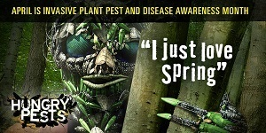 Invasive pests love spring