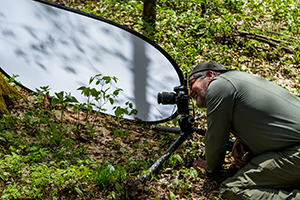 photographer kneeling in forest to get photo of wildflowers