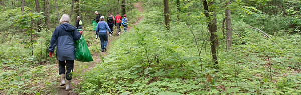 Stewardship volunteers walking on trail through forest