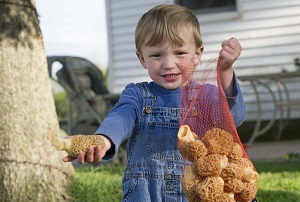 Little boy in overalls, standing in front of a house, with a net bag of morels in one hand, with his other hand outstretched holding a morel