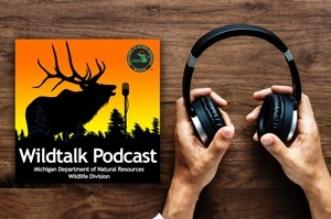 Wildtalk podcast graphic showing an elk profile and a pair of hands holding headphones, on a wood background