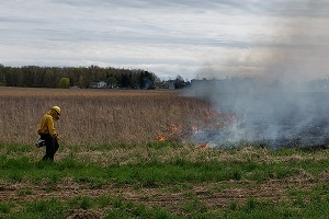 A fire crew staffer helps guide a prescribed burn on an open field, smoke billowing to the right