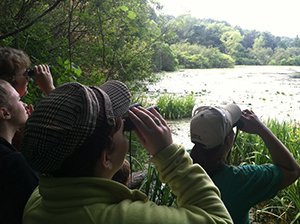 group of people looking for birds through binoculars in wetland area