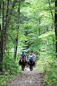 Equestrian trail riding is a popular activity at Mackinac Island State Park.
