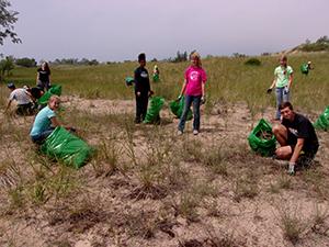 state park stewardship volunteers pulling knapweed
