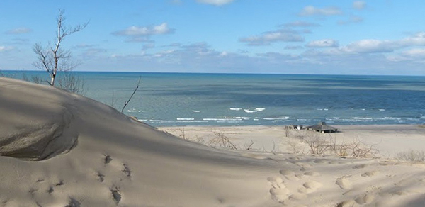 sand dunes at Warren Dunes State Park