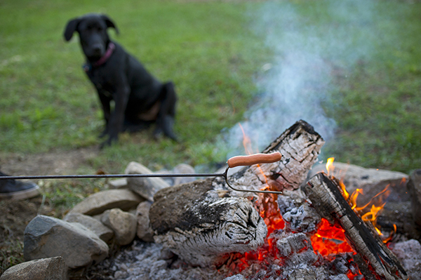 roasting hot dog over campfire in fire pit