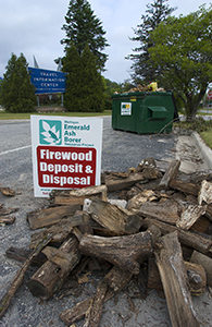 depository for firewood during emerald ash borer quarantine