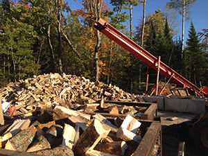 wood piled in preparation for kiln-drying