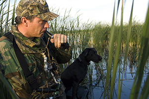 waterfowl hunter using call with dog in wetland