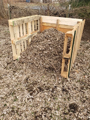 A composting bin, built from wood pallets, filled with and surrounded by dried, fallen leaves.