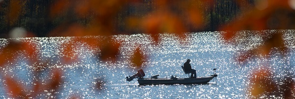 Shadow profile of someone fishing from a boat on sparkling blue water, framed by rust-colored fall leaves