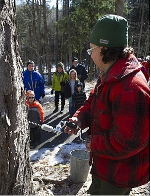 a man dressed in winter gear, tapping a tree to collect maple syrup, as a group of people watch