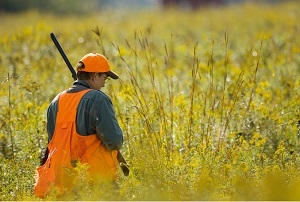 side view of a man wearing hunter orange vest and cap, holding firearm upright, walking through a grassy field