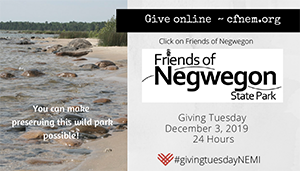 Giving Tuesday Northeast Michigan logo and event badge