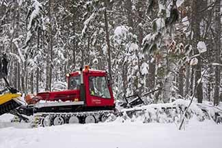 A piston bully pushes trees from a ski trail.