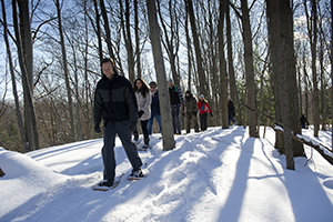 snowshoers on hike through woods