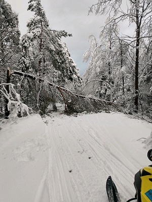 A trail view showing downed trees from recent storms in the eastern U.P.; provided by Les Cheneaux Grooming Club in Cedarville.