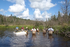 DNR crew in the water, conducting a stream survey with electrofishing gear, bright blue sky with clouds in background