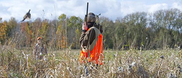 female pheasant hunter in field