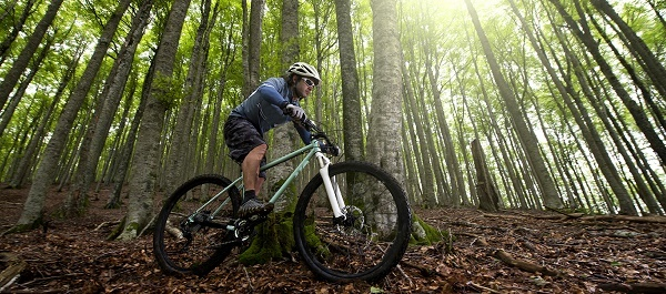 man wearing a helmet mountain biking along a wooded trail, sunlight streaming through the trees