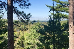 a view from the Van Riper State Park Overlook Trail of Lake Michigamme near Champion in Marquette County, Michigan