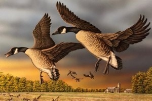2020 Michigan duck stamp image