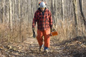 A bearded logger wearing safety gear walks in the woods