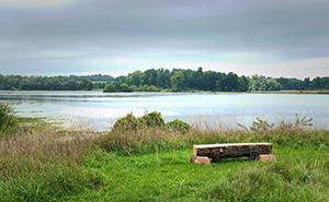 Bench sitting near Watkins Lake