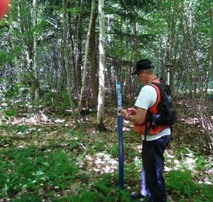 A man uses a mobile device in the forest