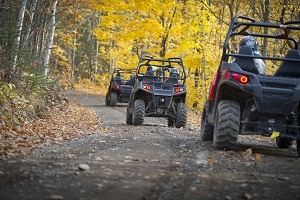 three off-road vehicles being driven away, single file, down a dirt trail, surrounded by autumn forest