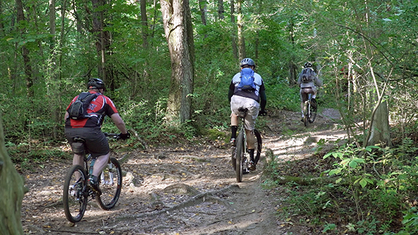 Three mountain bikers head out on a trail through a Michigan forest.