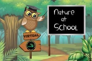 nature @ school