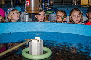 Wide-eyed children look into a fish tank at the Oden State Fish Hatchery.