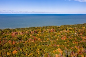 Aerial view of red, gold and orange colors in an autumn forest, blue lakeshore in the distance