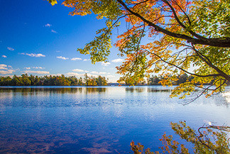 A very bright and colorful scene from Ludington State Park is shown.