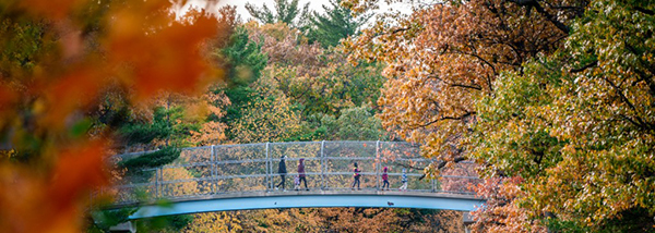 people walking over bridge with fall foliage surrounding it