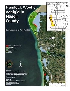 Map of Mason County, Michigan showing Ludington State Park and areas infested with hemlock woolly adelgid